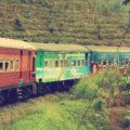 Langs hoge kliffen en theevelden – Sri Lanka