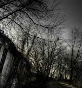 Halloween: Spooktreinen en andere verschijningen
