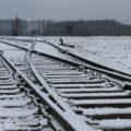 De trein naar Auschwitz…